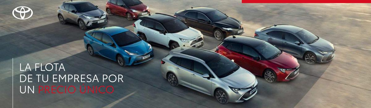 Vehículos Toyota Empresas